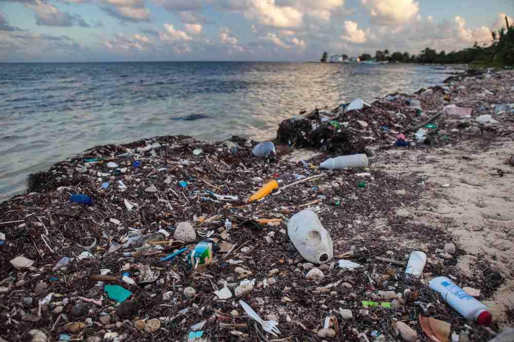 Plastic on Shoreline