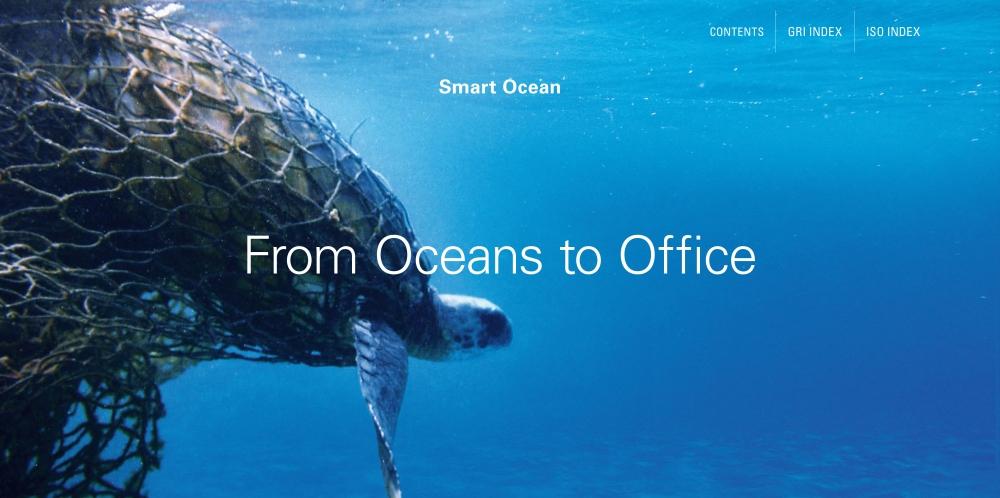 turtle caught in fishing net in ocean